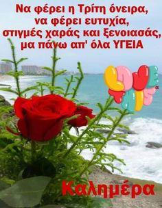 Beautiful Pink Roses, Greek Quotes, Morning Quotes, Good Morning, Night, Decor, Buen Dia, Decoration, Bonjour