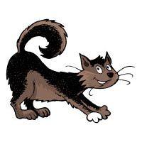 Projekt Katze Hund Und Haustiere Kindergarten Und Kita Ideen Haustier Projekt Haustiere Hund Und Katze