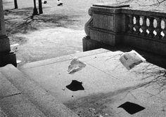 Yasuhiro Ishimoto, Chicago, 1959-61