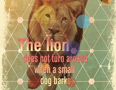 Dog Barking, Working On Myself, Small Dogs, New Work, Print Design, Lion, Behance, Check, Leo