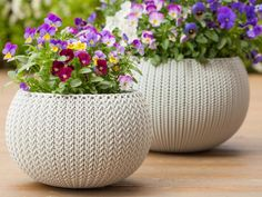 Don't let limited outdoor space prevent you from trying out your green thumb. From tasty fruits and veggies to flowering plants, trees and shrubs, container gardening is the trick to growing it all in less space than you may think.
