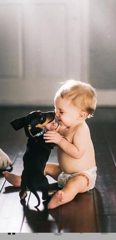 43 ideas funny kids and animals life Dachshund Puppies, Weenie Dogs, Dachshund Love, Cute Puppies, Daschund, Animals And Pets, Baby Animals, Cute Animals, Baby Dogs