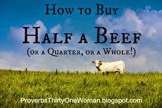 How to Buy Half a Beef (or a Quarter, or a Whole!) | Proverbs 31 Woman