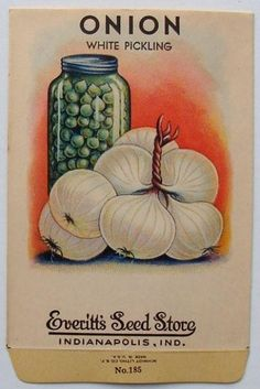 EVERITT'S SEED STORE,  1930's, Onion 185, Vintage Seed Packet
