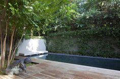 Modern Lap Pool.