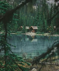 Onward and upward, into the woods Into The Woods, Cabin In The Woods, Forest Cabin, Forest House, See Yourself, Beautiful Homes, Beautiful Places, Lakeside Cabin, Cabins And Cottages