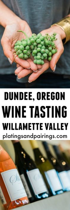 The Best Wineries to Visit in the Willamette Valley - Dundee, Oregon   platingsandpairings.com