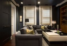 3400-Den by James Thomas LLC Dark walls, simple window treatments Could also function as a media room...
