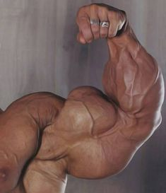 + Muscles • musclerod8888: Perfection…..