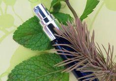 Recette : Spray purifiant fraîcheur pour la voiture  - Aroma-Zone
