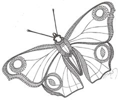 Фото: Teneriffe, Types Of Lace, Lace Art, Bug Art, Bobbin Lace Patterns, Crochet Butterfly, Lacemaking, Point Lace, Victorian Lace