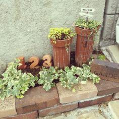 ステンシル/グリーンネックレス/ガーデンピック/ガーデニング /雑貨…などのインテリア実例 - 2015-08-08 10:45:35 | RoomClip(ルームクリップ) Back Garden Landscaping, Garden Paths, Back Gardens, Small Gardens, Small Outdoor Spaces, Garden Gifts, Garden Styles, Rustic Decor, Planter Pots