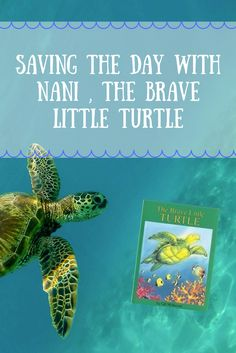 Teach kids the importance of ocean conservation and being brave with this colorful children's book and fun turtle activities!  Kid Crafts | Kid Recycling | Volunteering with Kids | Sensory Experiences