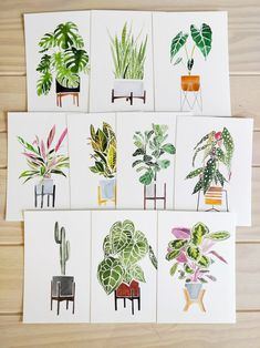 House Plants Postcards (set of Premium Stock) This is a set of 10 postcards printed on premium paper stock, created from my original watercolour painting. Watercolor Postcard, Watercolor Cards, Watercolour Painting, Watercolor Journal, Watercolours, Easy House Plants, Postcard Printing, Diy Postcard, Plant Painting