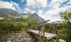 Wooden Bridge in High Tatras Mountains Free Stock Photo Free Stock Photos, Free Photos, Free Images, Nature Images, Nature Photos, High Tatras, Garden Bridge, Beautiful Pictures, Outdoor Structures