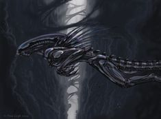 Leap Of Faith- Xeno art by jaxxblackfox on DeviantArt Alien Convenant, Giger Alien, Alien Races, Alien Art, Predator Movie, Predator Alien, Alien Creatures, Fantasy Creatures, Dragon Rey