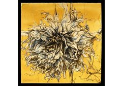 Helen Gotlib | Fall Dahlia V Gouache, ink, conte crayon and charcoal 39 x 39 inches