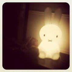 Glowing rabbit