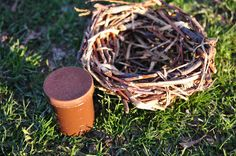 This handmade nest and cache combo can be tucked into branches above the normal focal range for clues that encourage cachers not to count their eggs before they hatch.