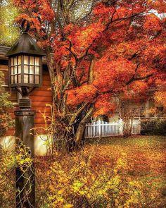 Autumn - House - Autumn Light Art Print by Mike Savad - Fall pictures nature - Autumn Art, Autumn Home, Autumn Leaves, Fall Trees, Autumn Painting, Mabon, Fall Pictures, Fall Photos, Funny Pictures