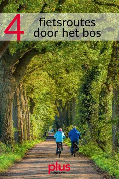 Belgium, Netherlands, Holland, Travel Tips, Places To Visit, Hiking, Country Roads, Camping, Bike