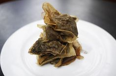 Top tips for Used tea bags