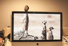 Desk Safari – Die besten Schnappschüsse