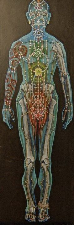 Chart showing the meridians within the human body.
