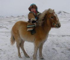 Mongol Pony.  Oh, how I wish I had had access to baby outfits like this one when my kids were small!