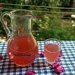 Otet de trandafiri, reteta medicinala simpla Cold Drinks, Alcoholic Drinks, Tea Cafe, The Creator, Canning, Tableware, Tips, Food, Cat