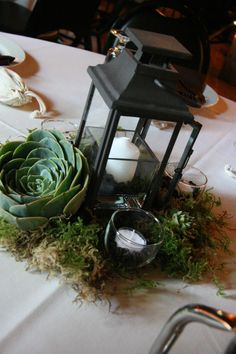 Eco-friendly weddings are a growing trend these days and succulents lend themselves to the occasion.  Beautiful in design and great texture, they can be used for decoration and then planted.  We've mixed them with moss, lanterns, and coffee filled candles holders to excite all of the senses.  Arrangement by A Floral Affair.  #weddingflowers #centerpieces #AFloral Affair