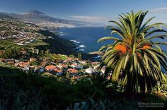 The climate of the Canary Islands , the best climate in the world . An eternal springtime with sunny , brightdays,blue skies as well as constant temperatures