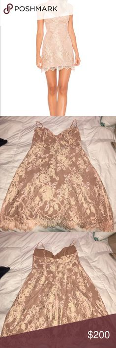 For Love and Lemons Bumble Bustier Dress Size small. Light pink bustier dress with built in underwire cups and gold lace rose detailing. For Love And Lemons Dresses Mini