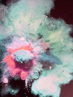 Sometimes love can find us like a sudden explosion of color. A crush.