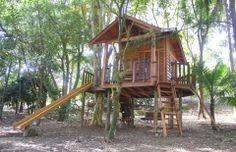 Projetos Infantis - Casa na Árvore