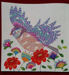 Dierenrijk Vogel