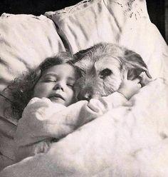 niña y perro duermen