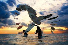 Swim, surf, skimboard...