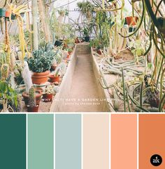 a cactus-garden-inspired color palette // viridian green, lambs ear green, coastal blue, desert sand, coral, terracotta