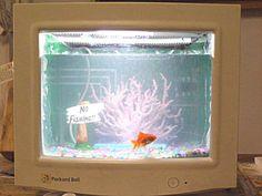 Ecran d'ordinateur de récup' transformé en aquarium