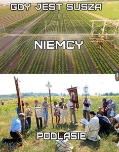 Assuring water for the crops Very Funny Memes, Haha Funny, Lol, Best Of 9gag, Polish Memes, Past Tens, Cursed Images, Man Humor, Best Memes