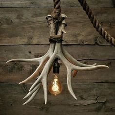Cabin Lit Chandelier: upcycled shed antlers by Moon Stone Fox Moon Stone Fox, an upcycling shop on Etsy, created this unique lamp called 'Cabin Lit Chandelier'. Its made out of 3 Grade A shed antlers. Deer Horns Decor, Deer Decor, Deer Hunting Decor, Cabin Lighting, Chandelier Lighting, Cabin Chandelier, Deer Antler Chandelier, Lighting Ideas, Candle Chandelier
