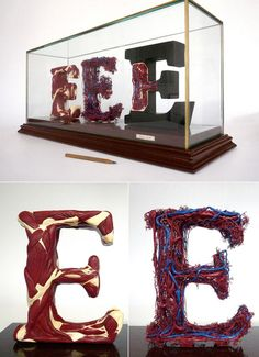 Alphabetical Anatomy – Sculptures by Andreas Scheiger - Pondly