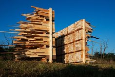 Q+A: Hello Wood on Nontraditional Models of Architectural Education - Architizer
