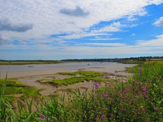 View of the River Stour between Flatford and Manningtree in the Dedham Vale. #homesweethome. http://www.travelpatch.co.uk/mid-summer-walk-flatford-to-manningtree-essex/