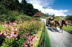 This Saturday, 13 April, the Swiss open-air museum Ballenberg will reopen its doors after the winter break.