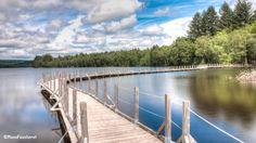 Passerelle sur le lac des Settons permettant l'accès à l'observatoire des oiseaux! #Morvan