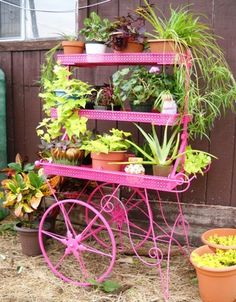 Painted my flower cart! - Homesteading Today