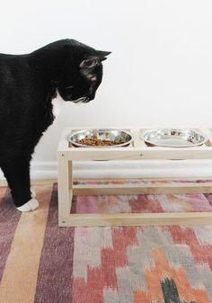 10 accessoires et jouets pour chats - 10 DIY to do for your cat @designsponge / Marie Claire Idées