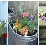 Saiba Como Decorar sua Casa com Flores de Forma Sustentável